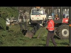 Ciara Storm: Officers in Strasbourg clearing fallen trees on tram tracks